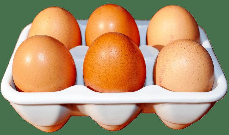 blog eggs.png