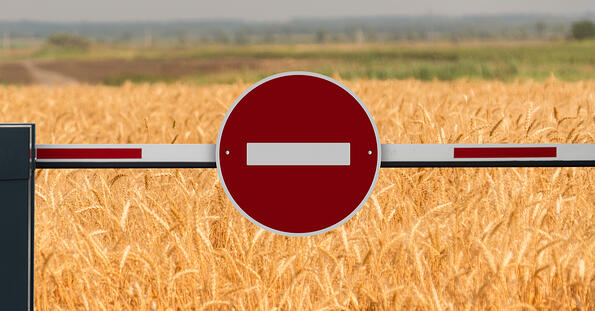 Wheat Export Ban due to Covid-19 emergency